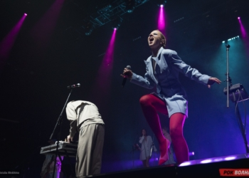 Hot Chip и The Horrors выступят на Пикнике Афиши 2015
