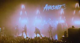 Ближайшие концерты